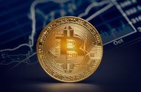 Do You Think Warren Buffett Is Wrong About Bitcoin?