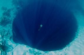 15 Images That Will Make You Think Twice About Going Swimming