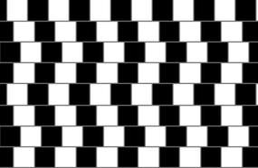 Test Your Brain With These Visual Illusions