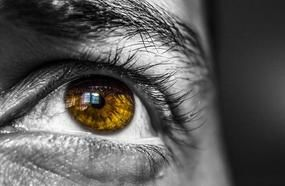Amazing Facts About Eyes Color That You Certainly Didn't Know Before