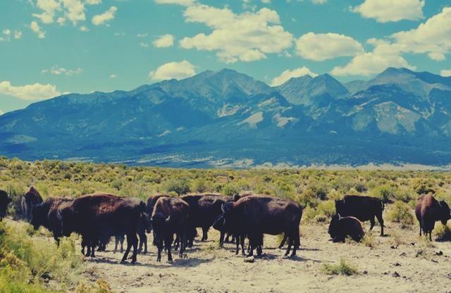 San Luis Valley In Southern Colorado