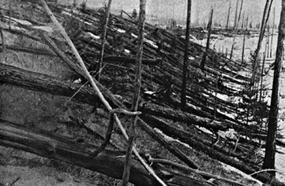 110-Year Anniversary: Tunguska Impact Event Remains A Mystery After A Century