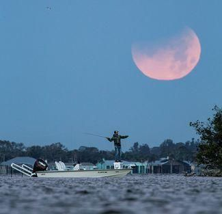 How Moon Phase Affects Fishing Success