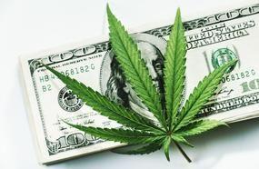 One Thing Every Marijuana Investor Needs To Know