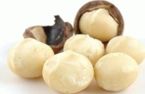 One Of The Most Expensive Nuts In The World - Macadamia