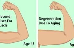 Exercises For Muscle Degeneration Due To Aging