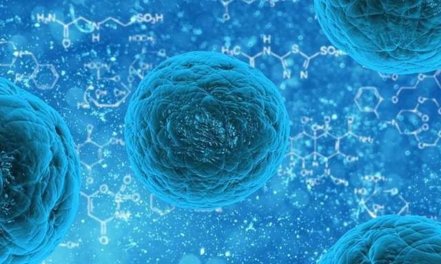 One-two punch knocks cancer cells out