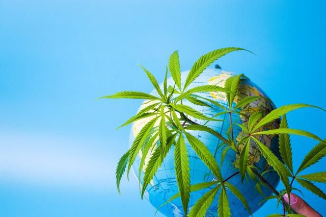 16 Marijuana 4/20 Facts That Show How Far The Cannabis Movement Has Come