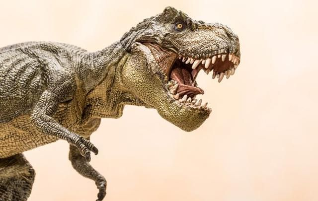 Everything You Ever Wanted To Know About The T. Rex But Were Afraid To Ask