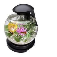 10 Best Fish Tank Kits: Your Buyer's Guide