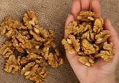 What Happens To Your Body, 4 Hours After Eating 5 Walnuts?