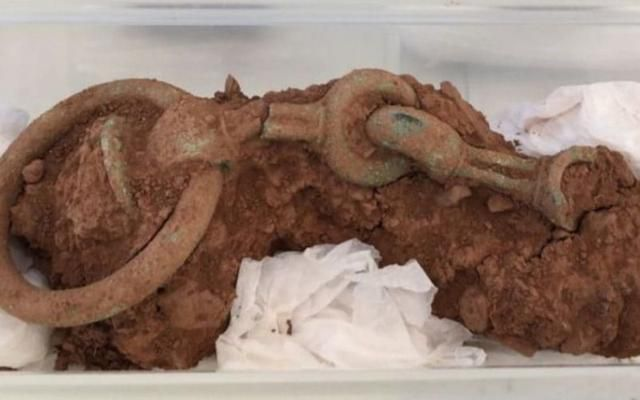 Iron Age Chariot Found By Metal Detectorist Could Fetch Up To £1M After It Is Declared As Treasure