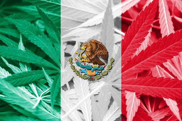 Mexico Aims to Legalize Recreational Marijuana Before October