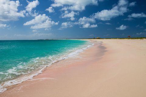 Pink Beaches of Barbuda, Caribbean Sea