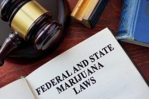 Marijuana News Today: Bill Introduced To Protect Marijuana Legalization In The U.S.
