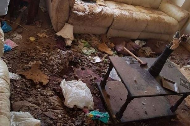 Vile Conditions Woman Made Her Pets Live In With Piles Of Poo On The Kitchen Counter