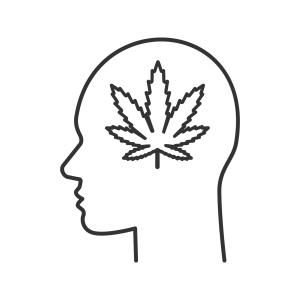 "One thought on "" ""Skunk"" Cannabis Disrupts Brain Networks – but Effects Are Blocked in Other Strains"""