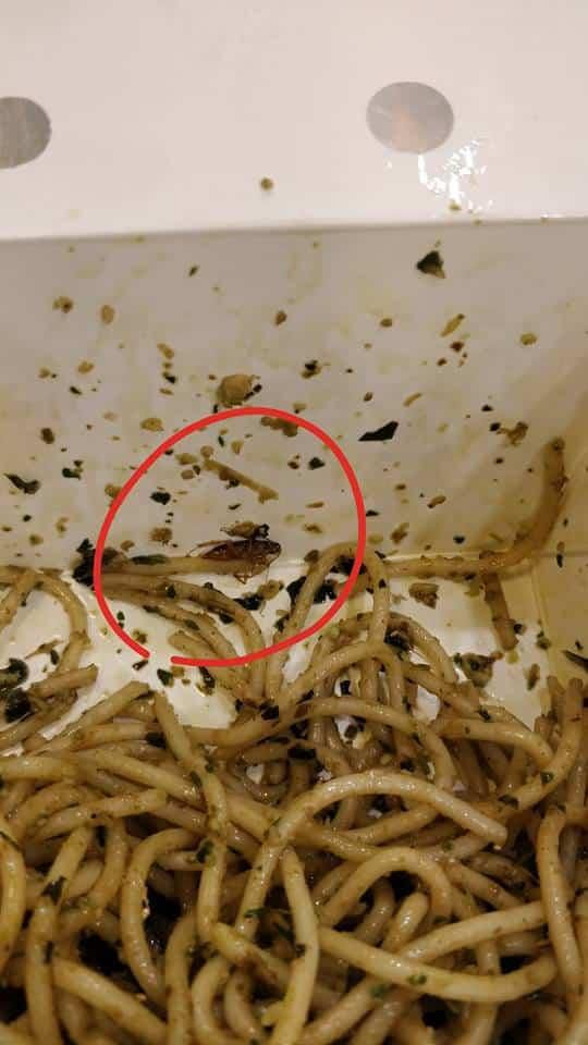 Woman Shares Disturbing Photos of Insect in Pesto Pasta