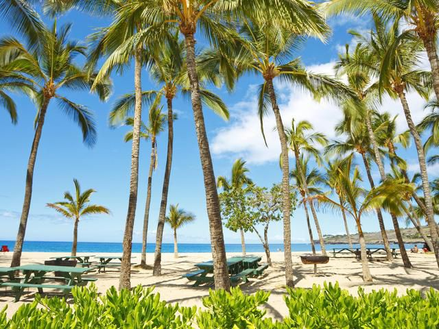 Which Hawaiian Island Should You Visit?