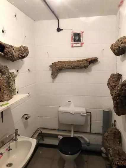 Someone Designed a Bathroom to House Giant Spiders and Its an Arachnophobia Nightmare