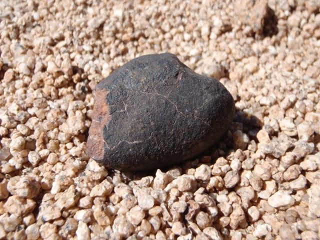 Oldest meteorite collection on Earth found in one of the driest places