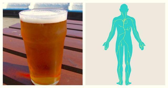 Good News: Beer Has 8 Unexpected Health Benefits