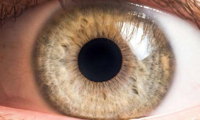 Bacteria live on our eyeballs-and understanding their role could help treat common eye diseases