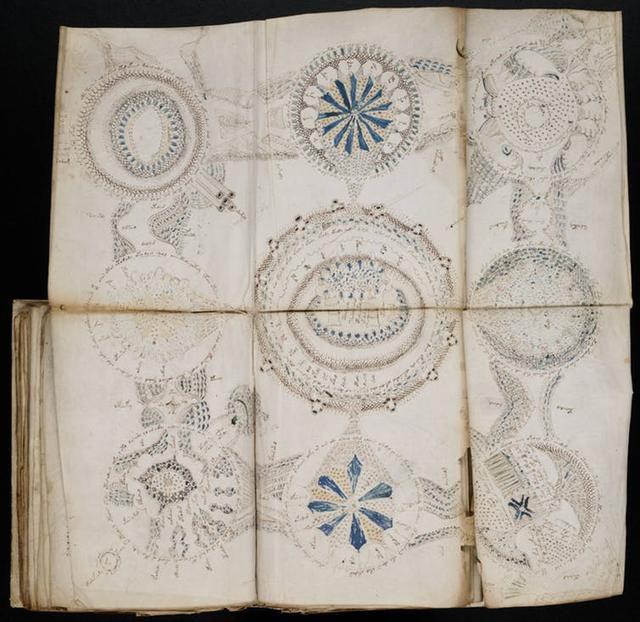 Neither researchers nor the media can put down the world's most mysterious book – and it's a problem for science