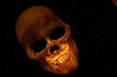 Strange Find: Ancient, Alien-Like Skulls Unearthed