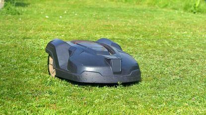The best robotic lawn mower