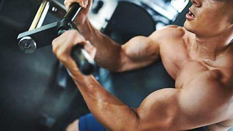 8 Tips to Build Bigger Arms