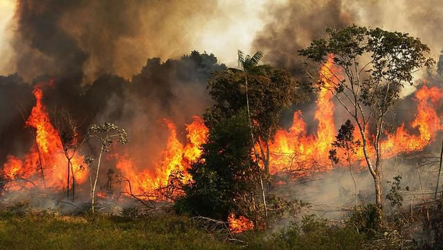 NASA, scientists crush climate change hysteria around Amazon fires - here's the truth