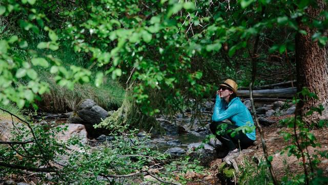 Forget Weed. Colorado's Hottest Trend is Forest Bathing