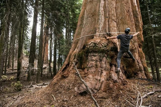 Escapes: Better than Yosemite? These 2 parks may be