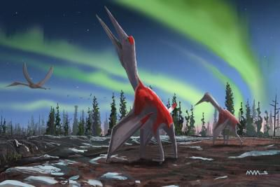 Scientists Discover Giant 'Frozen Dragon' In Canada