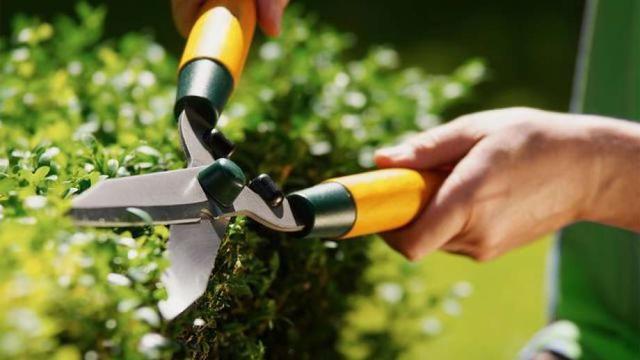 5 Surprising Maintenance Tasks Landlords Aren't Responsible for Handling