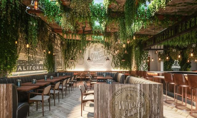 The first cannabis cafe in the United States opens