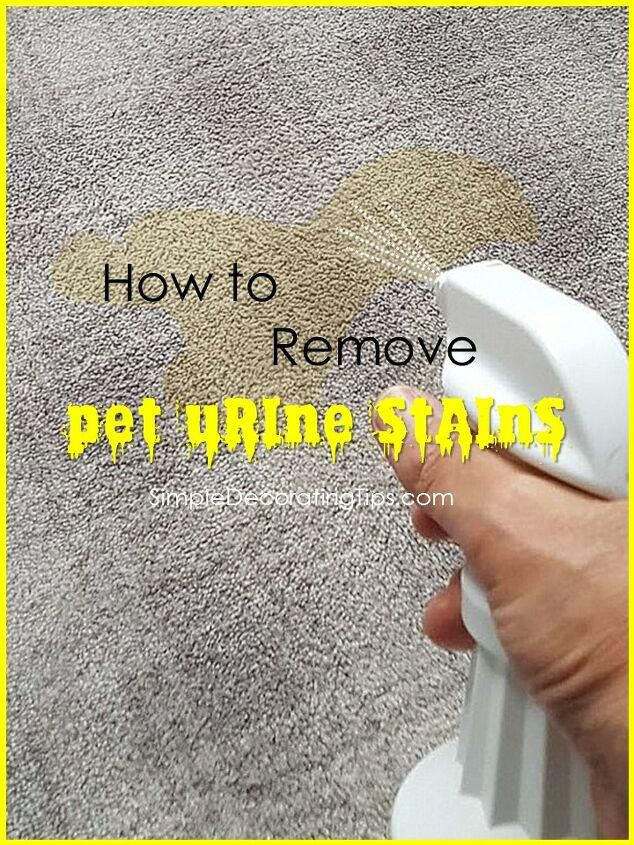 How to Remove Pet Urine Stains