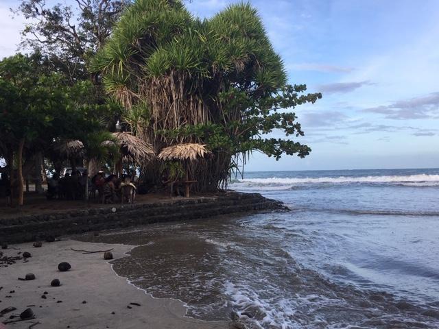 Cacao in Costa Rica