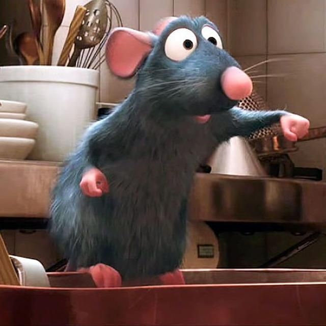 Everything You Need to Prevent and Get Rid Of Mice, According to Exterminators