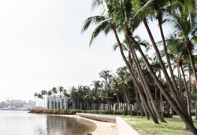 8 Best Things to Do in Palm Beach, Florida