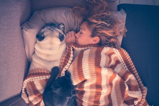13 Things Sleep Experts Would Never, Ever Keep In Their Bedroom
