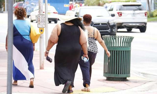 The ova of obese women have lower levels of omega-3 fatty acids