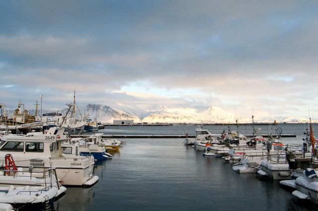 More than Just Puffin: A Quick Guide to Icelandic Cuisine