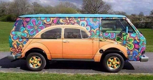 Beetle Painted On Volkswagen: Pictures Of Gorgeous VW Bus Art Paintings