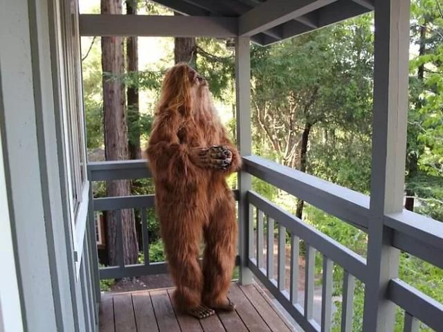This Real Estate Listing Features Photos Of Bigfoot Selling His California House (16 Pics)
