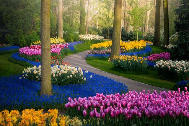 The Most Beautiful Flower Garden In The World Without People
