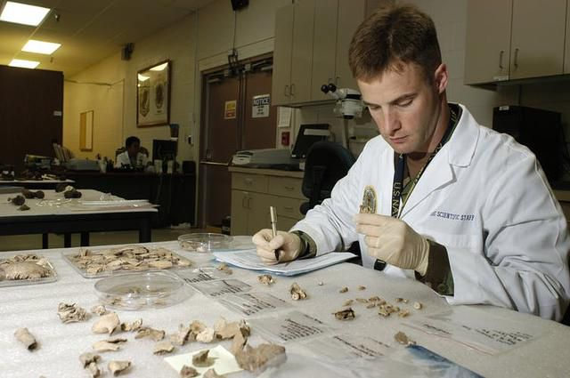 The human body never truly disappears – finding the remnants of a tragic end can help us uncover atrocities