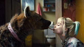 5 reasons hyenas like Harley Quinn's 'Bruce' are amazing