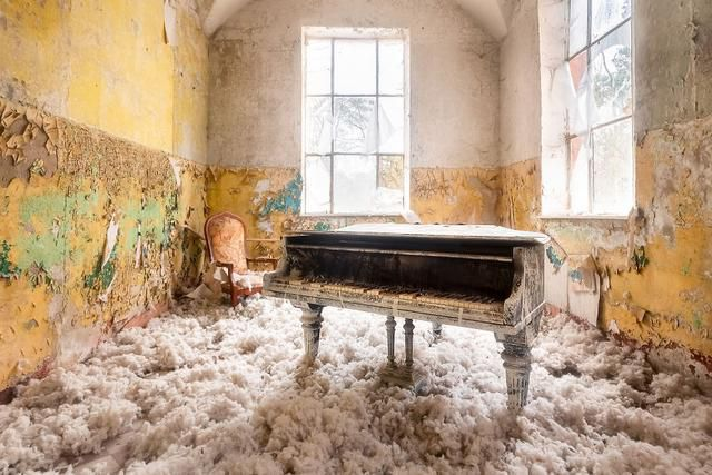 I Photograph Abandoned Pianos Left To Rot